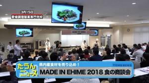 MADE IN EHIME 2018-CATV